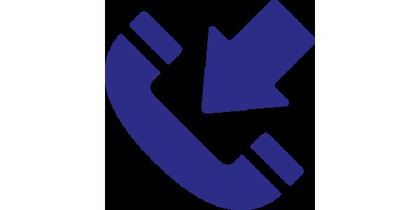 Comandă la Telefon
